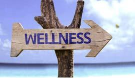 wellness-270-157